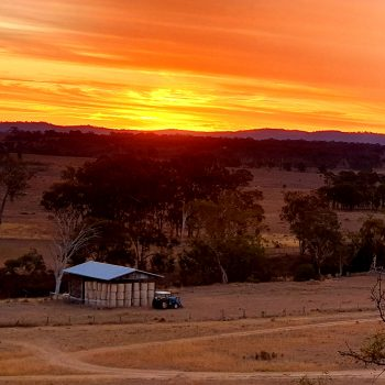 Sunset over the hay shed
