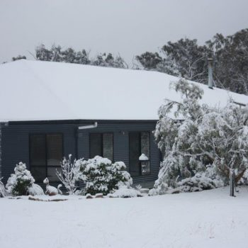 Stanthorpe Snow